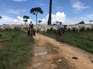 Zondag 23 februari start de zesdelige documentaireserie De Amazone op NPO 2