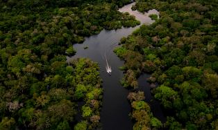 Brazilië bevestigt eerste besmetting coronavirus bij inheemse bevolking in Amazone