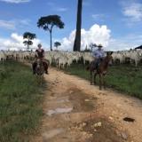 Zaterdag 18 juli start de herhaling van de zesdelige documentaireserie De Amazone op NPO 2