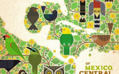 Vogelzang en elektronische muziek: bijzonder album gelanceerd