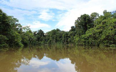 Gelekte documenten: Mercosur-verdrag voldoet niet aan milieunormen