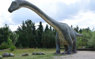 De dinosaurus maakte overstap van Zuid-Amerika naar Groenland door klimaatverandering