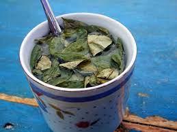 Cocabladeren kauwen is eeuwenoude traditie…