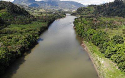 Uitstoot CO2 in Amazone hoger dan opname